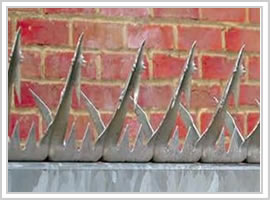 Sesecurity Fence Spikes Berming Security Fencing Co Anti